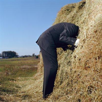 needle_haystack